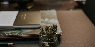 עבירות סמים - שימוש עצמי, סחר, החזקה וייבוא.